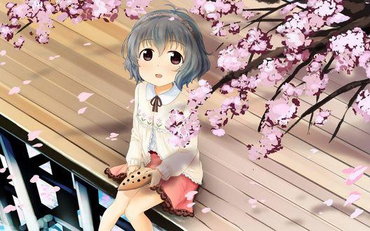 Обои Narumiya Yume / Нарумия Юмэ из аниме Идолмастер: Девушки-золушки / The iDOLM@STER Cinderella Girls, сидит под цветущей сакурой