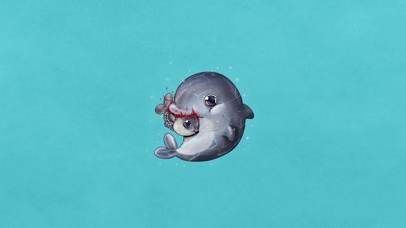 Обои Дельфин ест рыбку