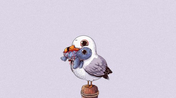 Обои Чайка держит в клюве черепашку, американский иллюстратор Alex Solis / Алекс Солис