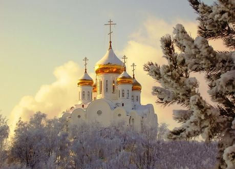 Обои Заснеженные деревья, белая церковь с золотыми куполами на фоне неба