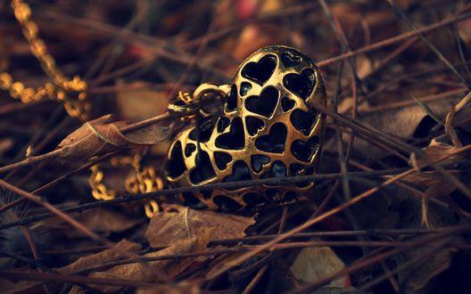 Обои Золотой кулон в форме сердца лежит в листве