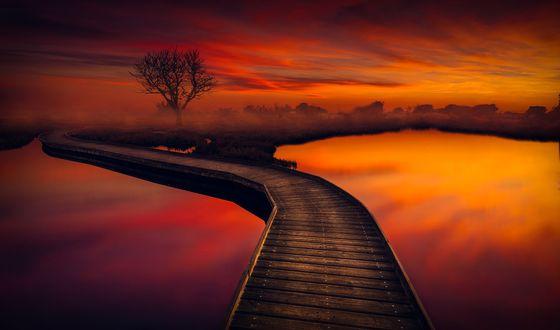 Обои Ранее утро, мостик через реку, фотограф hmetosche