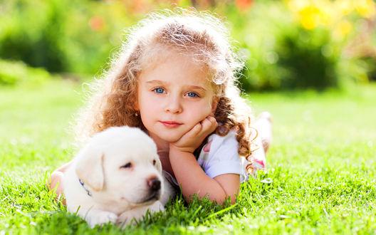 Обои Светловолосая кудрявая девочка лежит на зеленой траве с щенком золотого ретривера, освещенная ярким солнцем на размытом фоне
