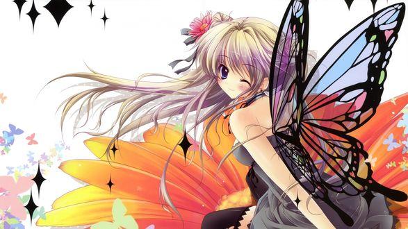 Обои Девушка с крыльями бабочки на фоне цветка