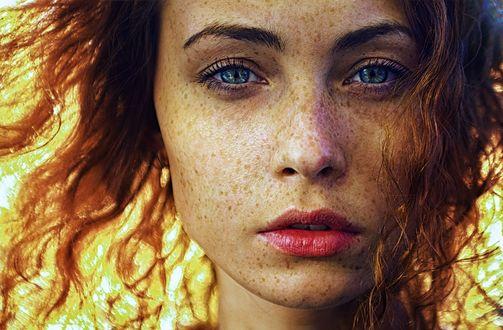 Обои Лицо девушки с веснушками и красивыми глазами