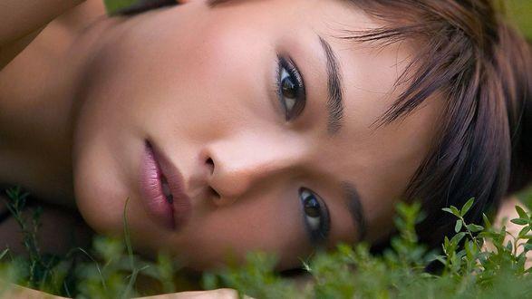 Обои Крупный план лица девушки азиатской внешности, лежащей на траве
