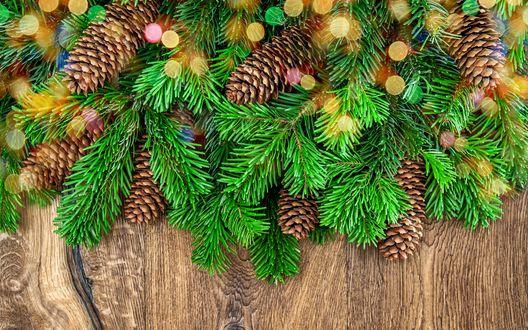 Обои Новогоднее украшение из хвойных веточек с шишками