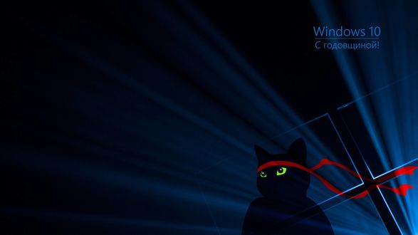 Обои Обои с логотипом windows 10 и котом-самураем (с годовщиной)