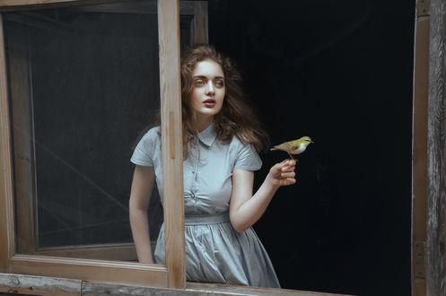 Обои Модель Ирена с птицей на руке у открытого окна. Фотограф Наташа Янкелевич