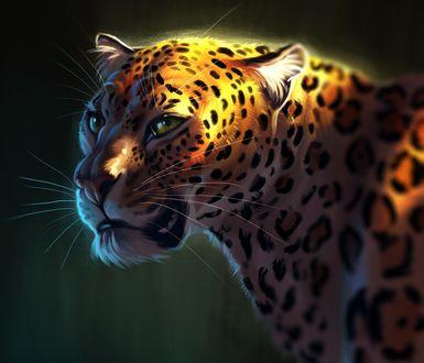 Обои Леопард с зелеными глазами, by TehChan
