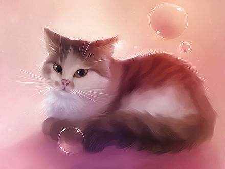 Обои Кошка и мыльные пузыри на розовом фоне, art by apofiss