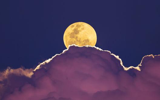 Обои Ярко-желтая луна над сиреневыми облаками в беззвездном ночном небе