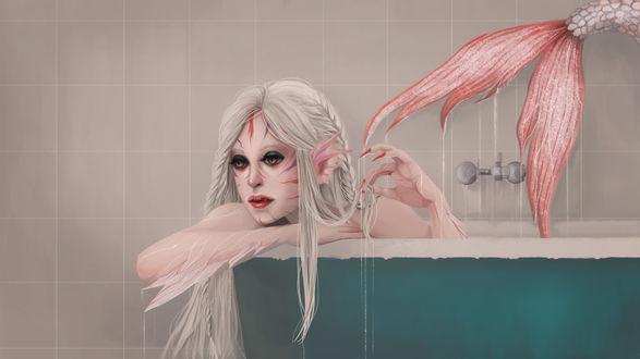 Обои Альбинос девушка-русалка в ванной, by fcnjt