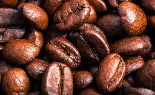 Обои Обжаренные кофейные зерна крупным планом
