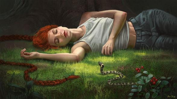Обои Девушка с длинной косой лежит на траве перед змеей, by AlexShiga