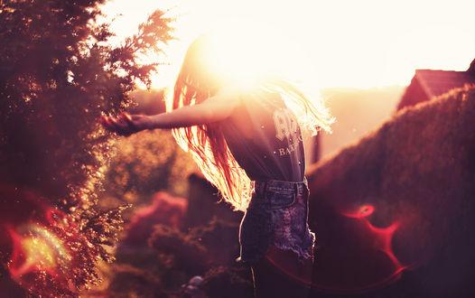 Обои Девушка раскинув руки в стороны стоит на фоне природы в свете солнца, by Jessica Christ