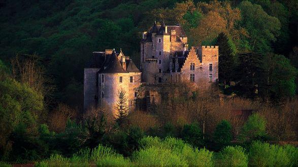 Обои Одинокий замок среди зеленых лесов