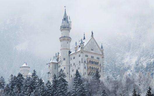 Обои Белый замок посреди заснеженного леса