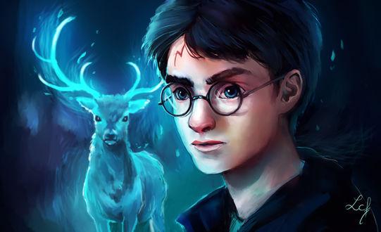 Обои Harry Potter / Гарри Поттер со своим патронусом из фильма Harry Potter / Гарри Поттер, by Ludmila-Cera-Foce
