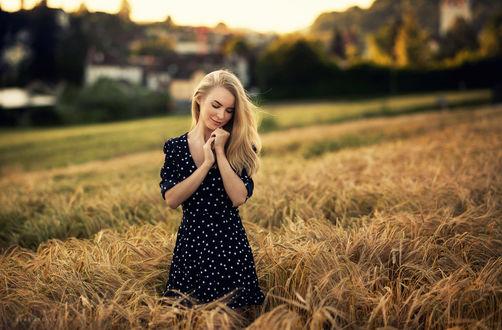 Обои Модель Виктория в черном платье в горошек стоит в поле, фотограф Sean Archer