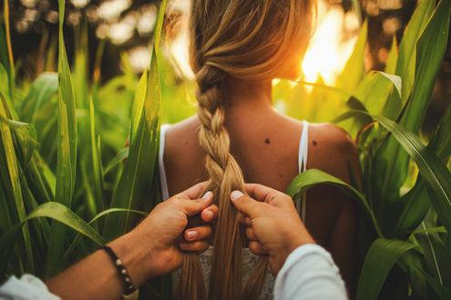 Обои Парень заплетает девушке косу, фотограф Гуляев Виталий