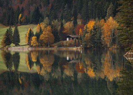 Обои Дом в гуще деревьев у озера