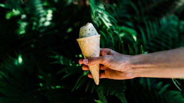 Обои Рожок мороженного в руке парня