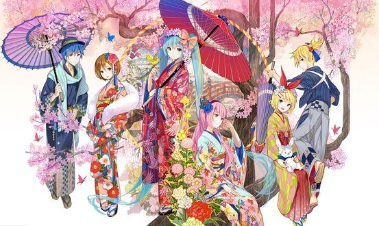Обои Vocaloids / Вокалоиды Хатсунэ Мику / Hatsune Miku, Рин и Лен Кагамине / Rin & Len Kagamine, Megurine Luka, Shion Kaito и Sakine Meiko в японской одежде с зонтами под цветущей сакурой