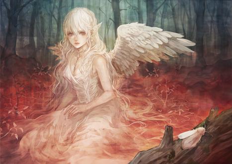 Обои Девушка-ангел сидит в лесу, глядя на белого мотылька, сидящего на стволе поваленного дерева, by Senano Yu