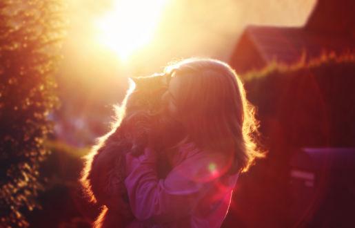 Обои Девушка с котом на руках, фотограф Jessica Christ