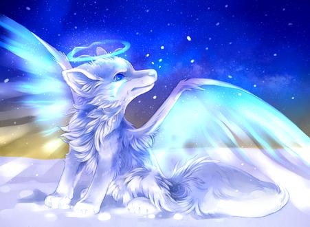 Обои Белый волчонок с крыльями и нимбом над головой сидит на снегу, by PixelRaccoon