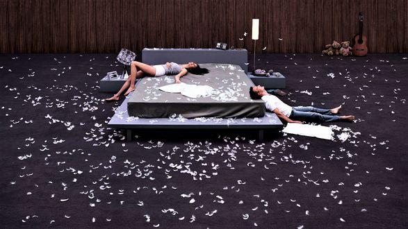 Обои Большая спальня в перышках после боя подушками