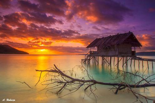 Обои Закат на острове Mansuar Island, Raja Ampat, West Papua, Indonesia / Mansuar, Радж Ампате, Западное Папуа, Индонезия, фотограф Anton Raharja