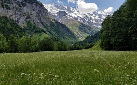 Обои Зеленое поле у подножия гор в городке Лаутербруннен, Швейцария / Lauterbrunnen, Switzerland
