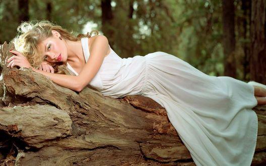 Обои Девушка в белом платье лежит на старом дереве