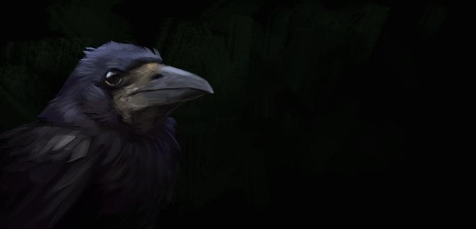 Обои Портрет черной вороны на темном фоне, by Brevis-art