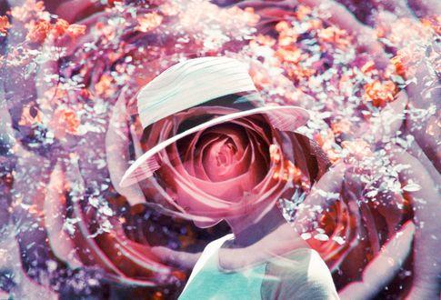 Обои Силуэт девушки в шляпе на фоне розы, by Hayden Williams