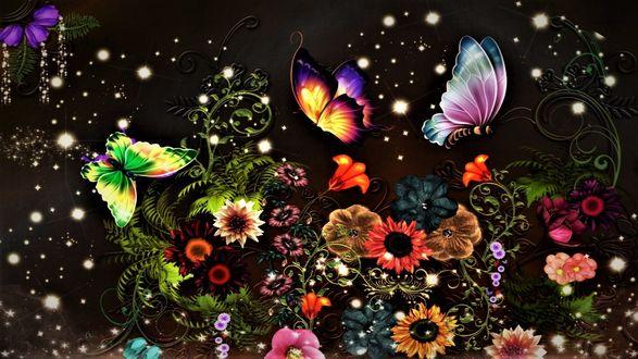 Обои Яркие бабочки, цветы и искры на черном фоне