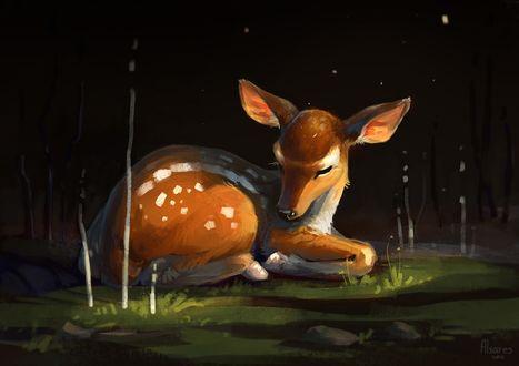 Обои Спящий олененок на траве, by AlsaresLynx