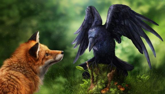 Обои Лиса смотрит на ворона, by AlenaEkaterinburg