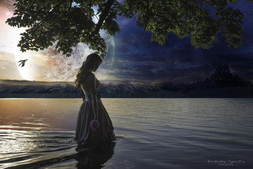 Обои Девушка с цветком стоит в воде на фоне природы
