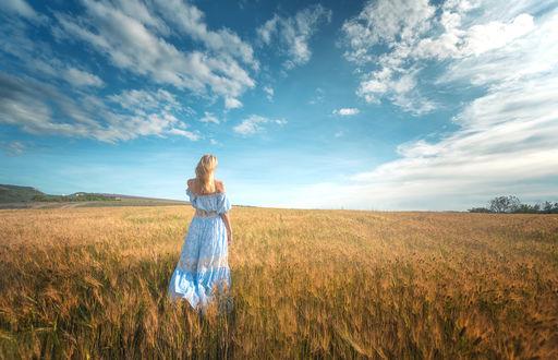Обои Девушка стоит в поле к нам спиной на фоне голубого неба с облаками