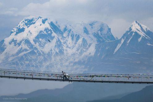 Обои Мужчина с велосипедом на подвесном мосту на фоне заснеженных горных вершин, фотограф Callie Chee