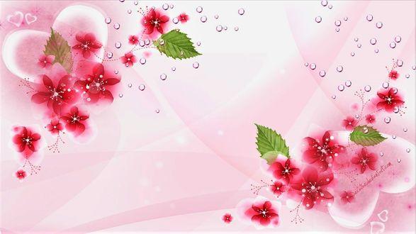 Обои Сердечки и цветы на белом фоне