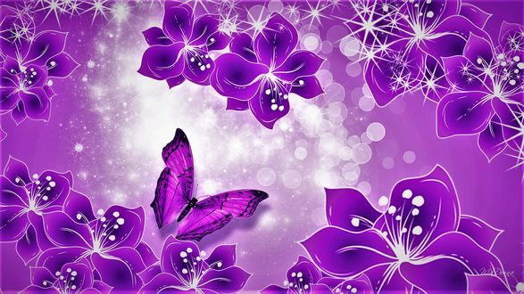 Обои Фиолетовые цветы и бабочка, блики света