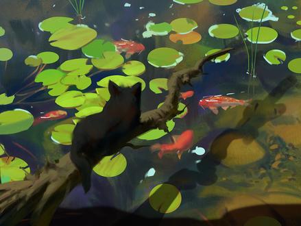 Обои Черный кот лежит на ветке над водой с плавающей в ней рыбами, by snatti89