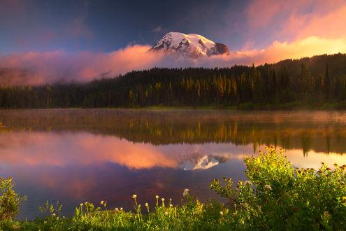 Обои Отражение горы Rainier / Ренье и леса в озере на восходе, фотограф Kevin McNeal