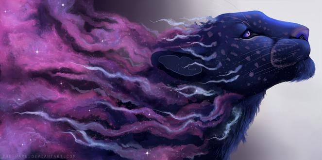 Обои Космический леопард, by The-Hare