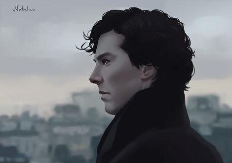 Обои Бенедикт Камбербэтч / Benedict Cumberbatch в роли Шерлока Холмса / Sherlock Holmes из телесериала Шерлок / Sherlock, by natalico