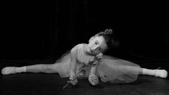 Обои Милая девочка - балерина сидит на шпагате на полу с цветком в руке